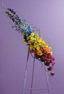 Rainbow Arrangement